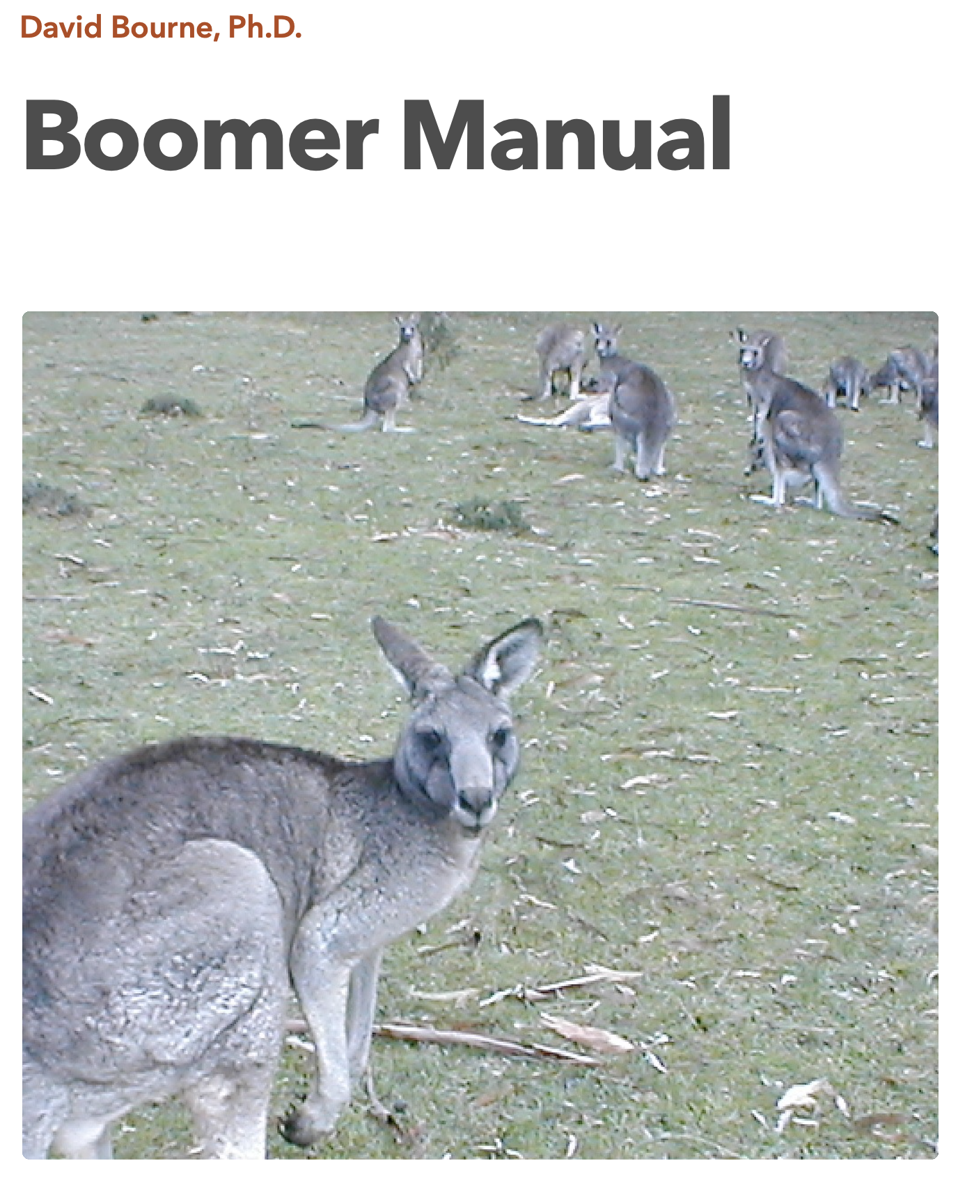 Boomer Manual cover